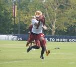 DeSean Jackson attempts to make a diving grab.