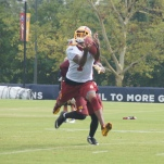 DeSean Jackson attempts to make a diving grab.